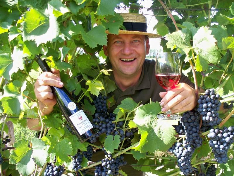 Bild 0 Weingut Schurig