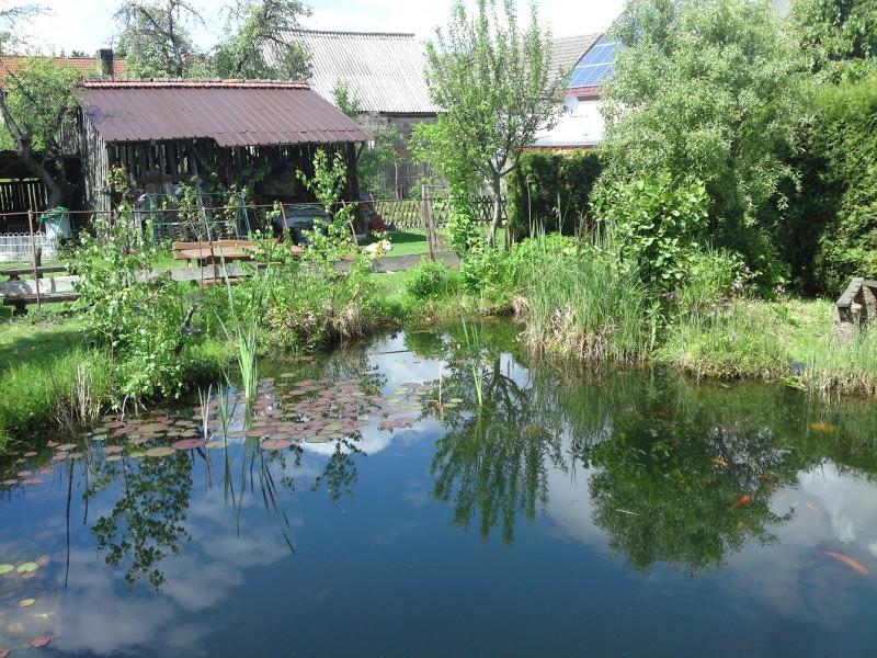 Bild 2 Landwirtschaft umd Urlaub auf dem Bauernhof - Birkenhof