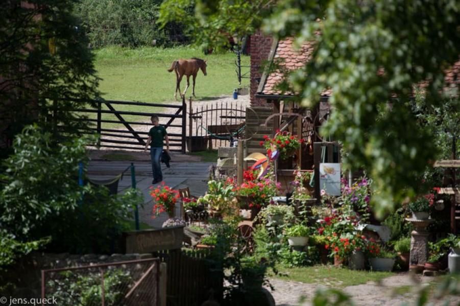 Bild 2 Naturbauernhof Gierke
