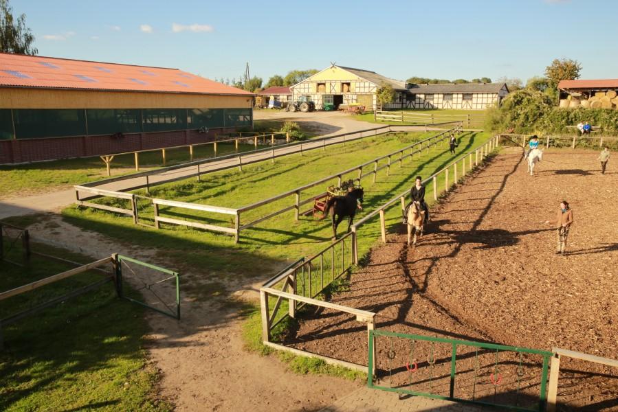 Bild 0 Pension für Pferd und Reiter