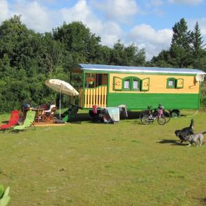 Bild 0 Naturwagen