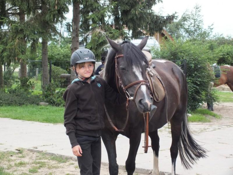 Bild 0 Ferien- und Pferdehof Schörfke
