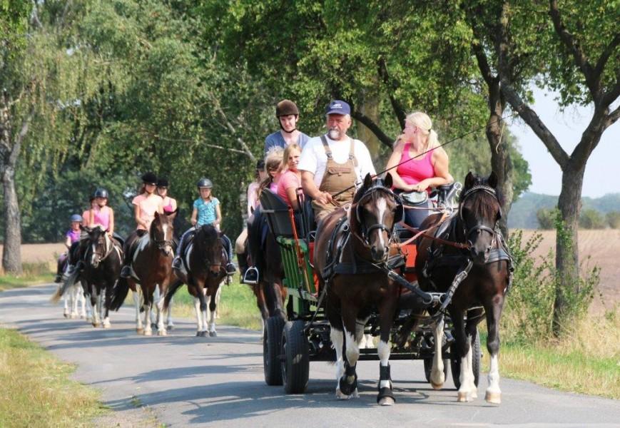Bild 2 Ferien- und Pferdehof Schörfke