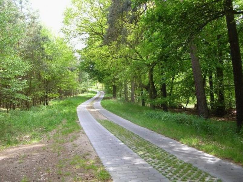 Bild 3 Natur und Sterne erleben im Havelland - Ferienhausvermietung Liane Zemlin