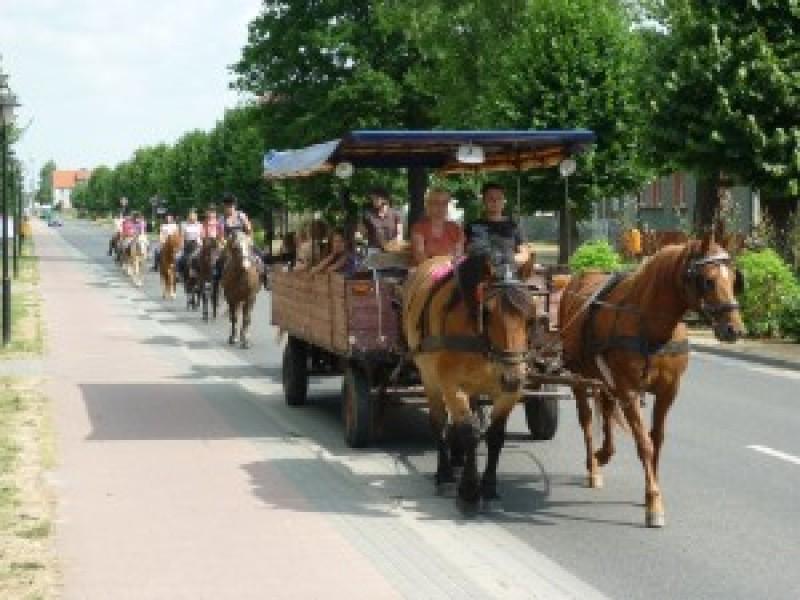 Bild 1 Pferdehof Bialek