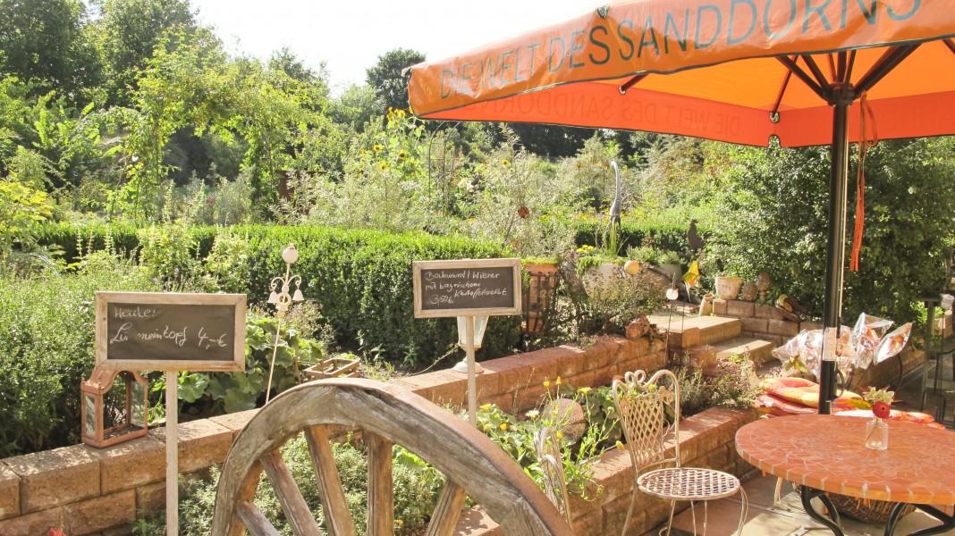 Bild 2 Sanddorn-Garten Christine Berger in Petzow