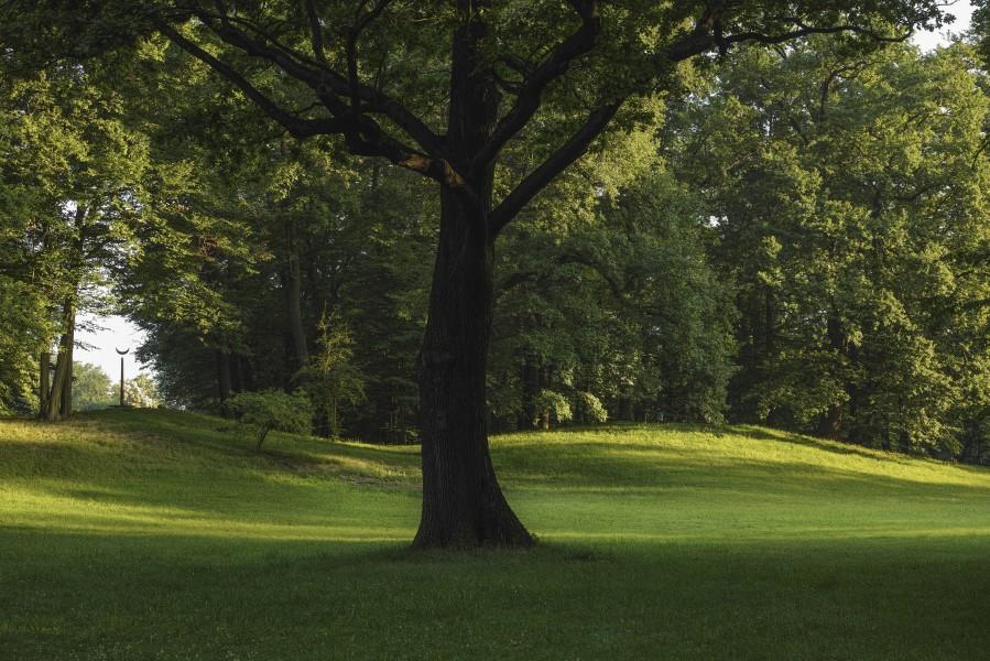 Bild 2 Park und Schloss Branitz