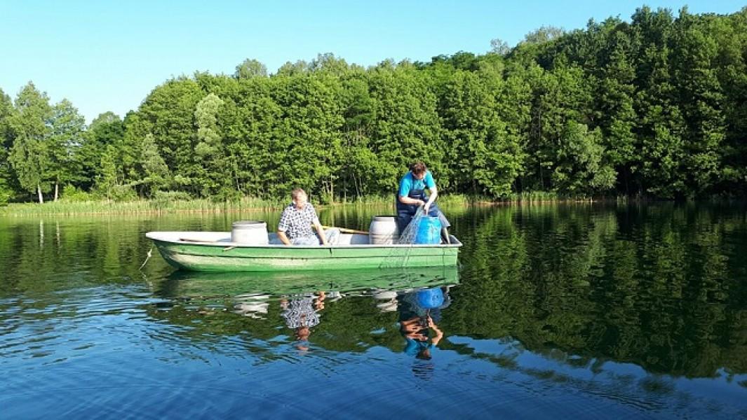 Bild 1 Ferienwohnung beim Fischer