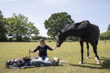 Bild Sabine Schnabel - Klang für Pferde