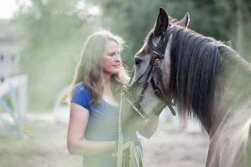 Bild Systemisches Pferdecoaching Dr. Sabine Schröder
