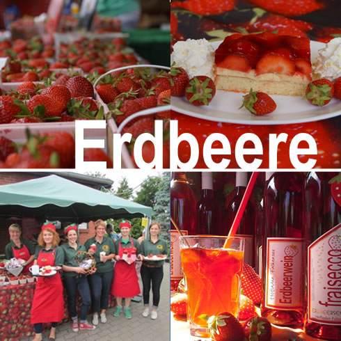 Bild 3 Hofladen Falkensee