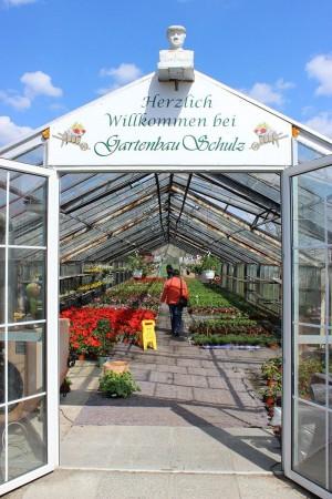 Bild Gartenbau Schulz - Ihre Gärtnerei
