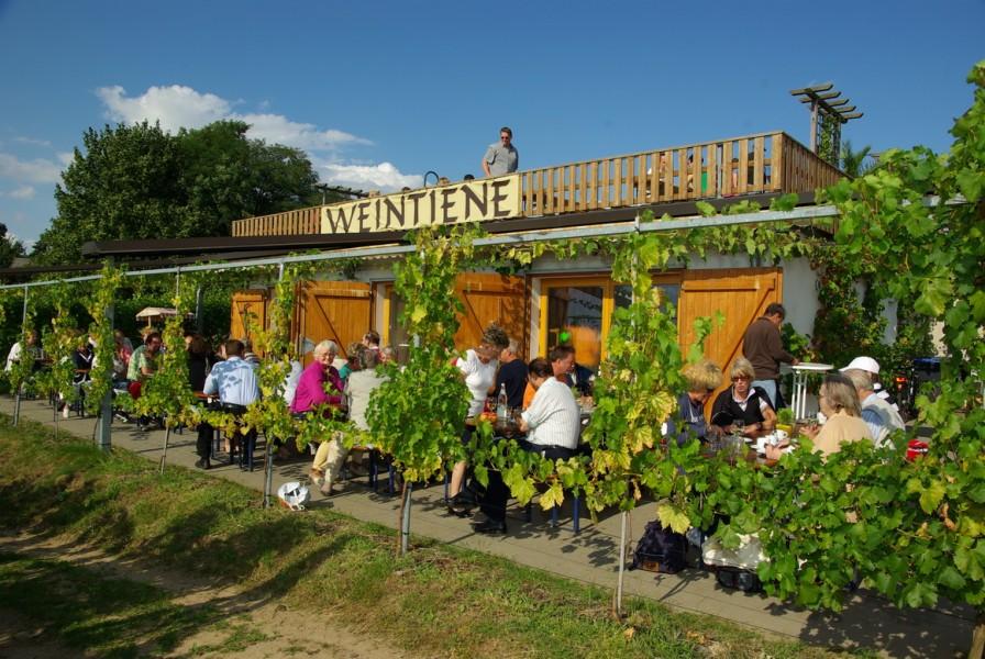 Bild 1 Straußwirtschaft Werderaner Wachtelberg