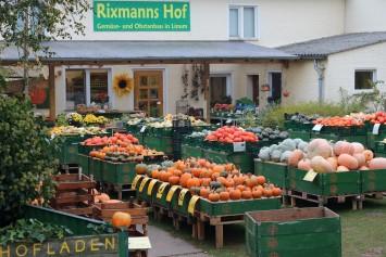Bild Rixmanns Hof Linum